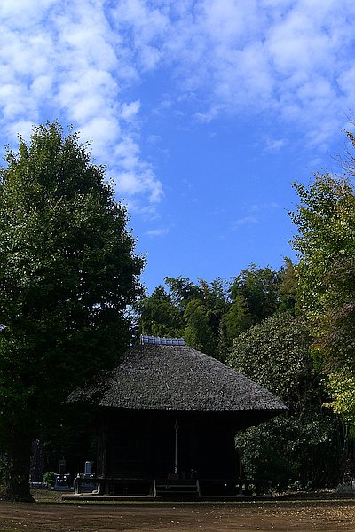 CIMG5718blog_20111102170952.jpg