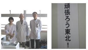 drmurakami-14.jpg