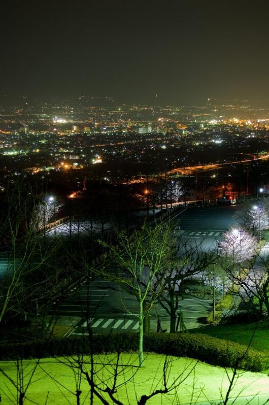 _DSC0027 フルーツ公園 夜景2