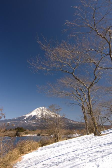 2010 02 07_1653 サクラ待ちの富士 2