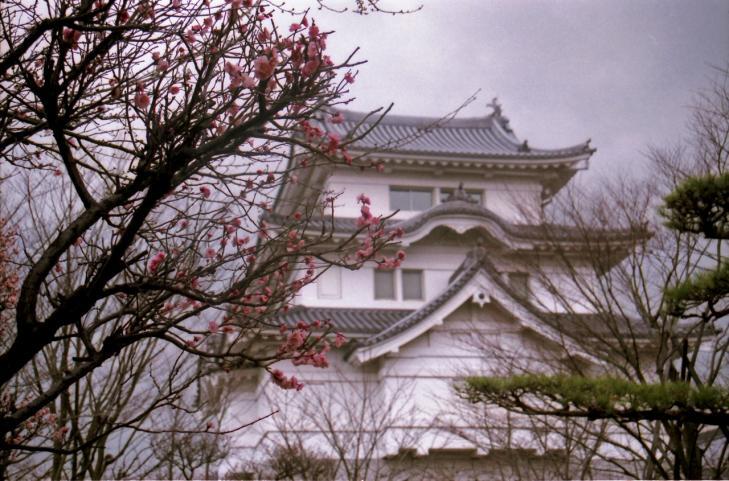 eos5 関宿城と梅