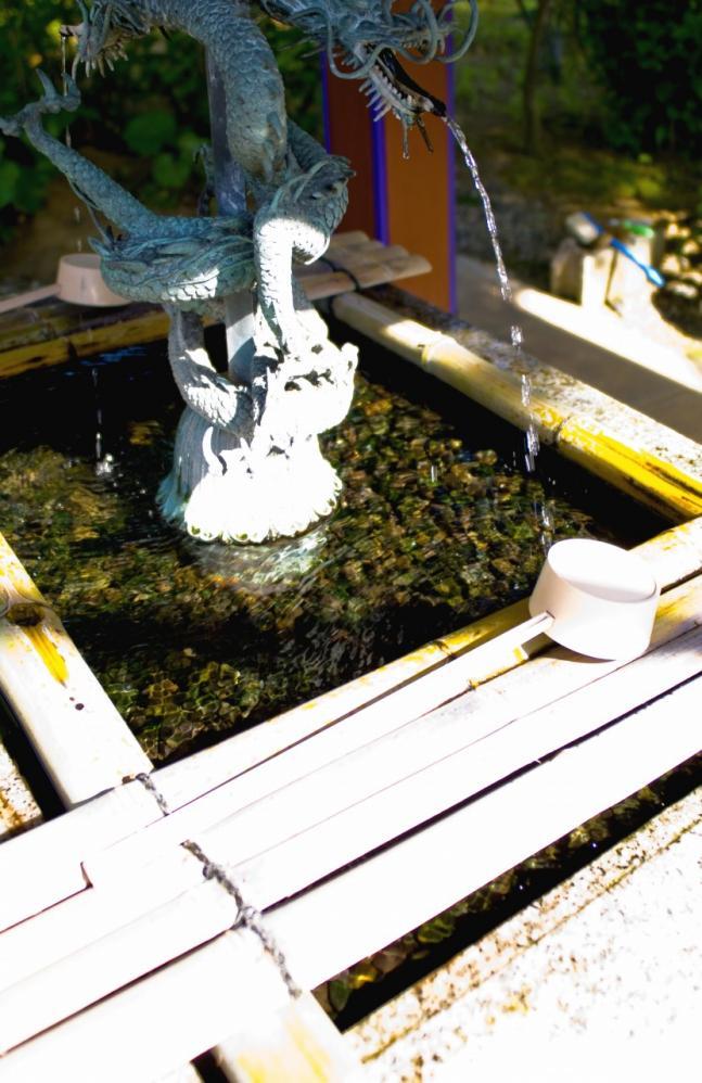 2010 05 18 寺 (3) 竜のゲロ