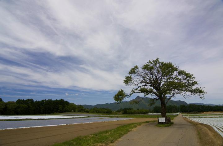 2010 06 06 山梨~長野 (42)+1