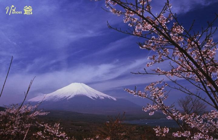 リバーサル 富士山 プリントスキャン