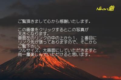 2010 01 24_1423 Mt,Fuji D2x 52 焼富士