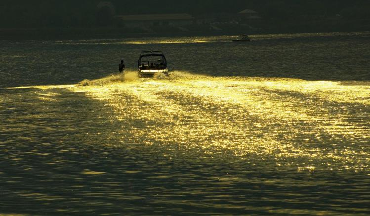 黄金の波 河口湖 (55)