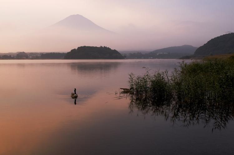 富士 河口湖4