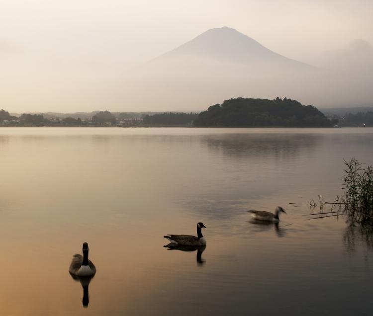 富士 河口湖3