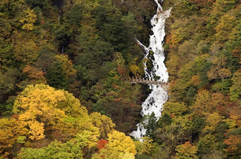 2010 白雲の滝