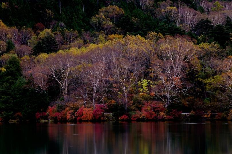 2010 湯の湖 紅葉 sRGB