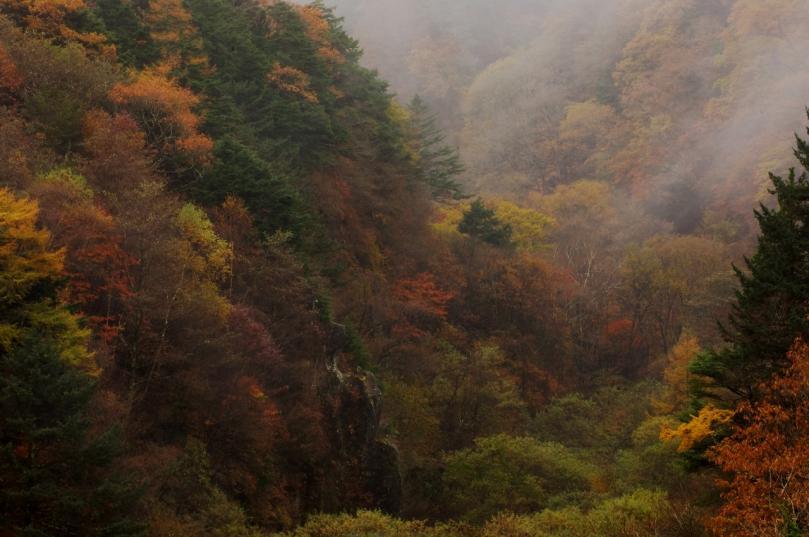 2010 10 31 八ヶ岳  赤い橋