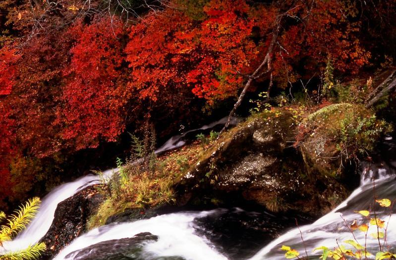 竜頭の滝 500f 2400