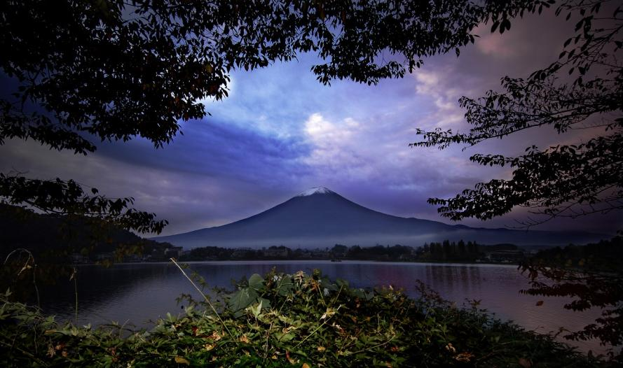 河口湖 藪から富士