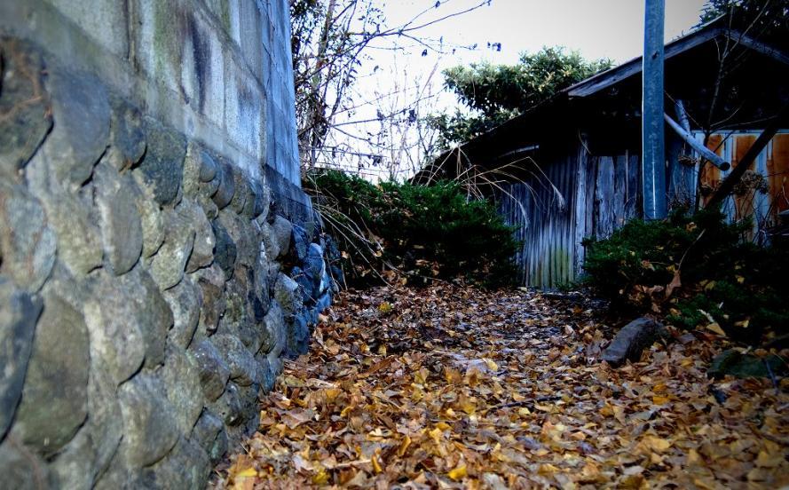 廃墟住宅5