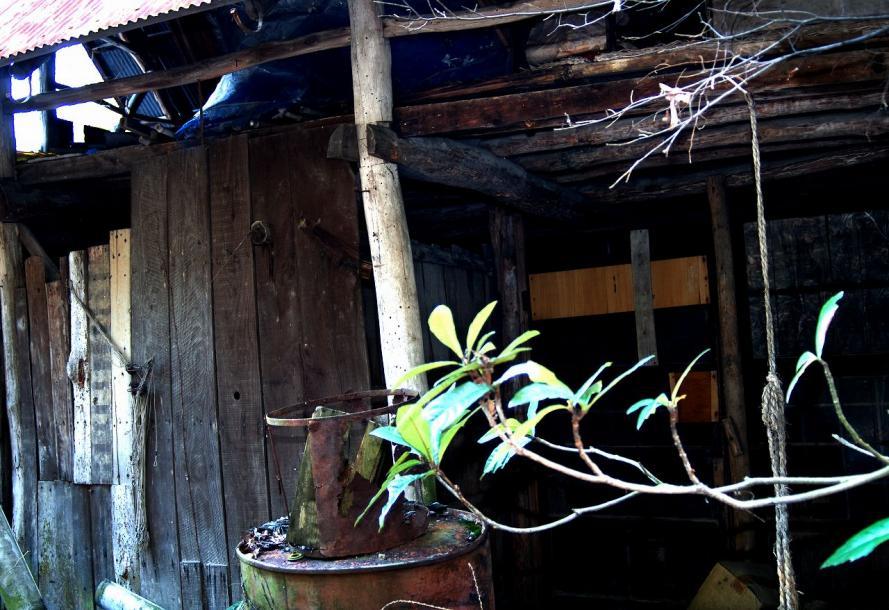 廃墟住宅2