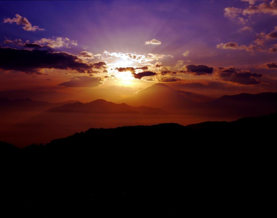 平林の朝彩