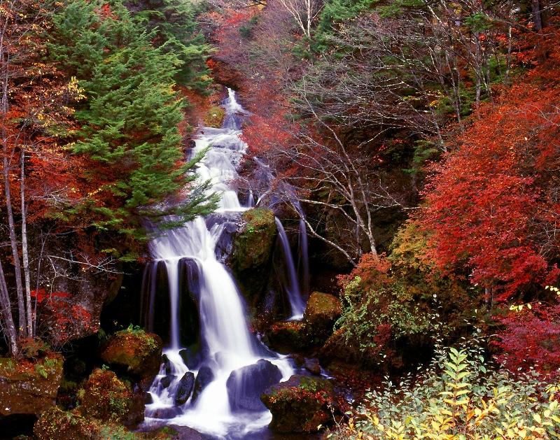 2010 竜頭の滝
