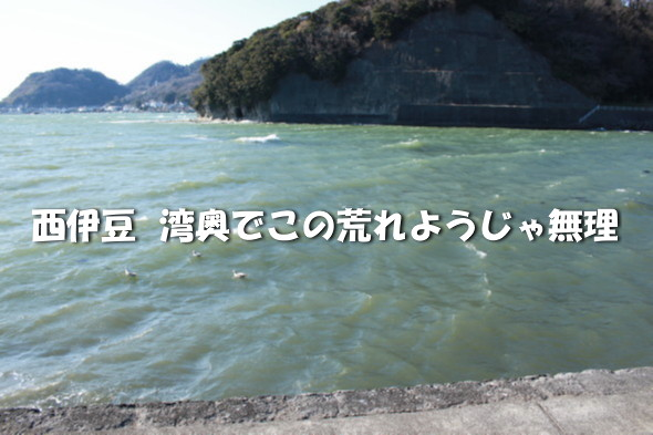 IMG_6513.jpg