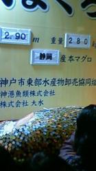NEC_0818.jpg