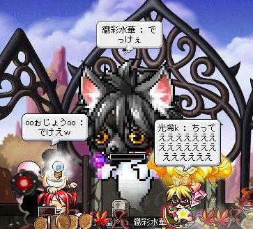 Maple110923_015236.jpg