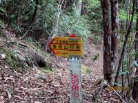 最初の標識