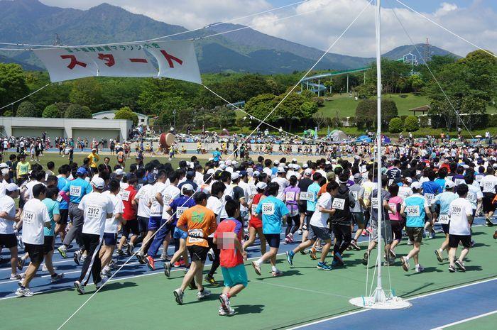 富士裾野高原マラソン3