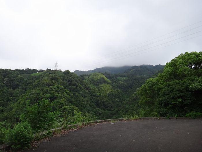 高草山ハイキングコース4