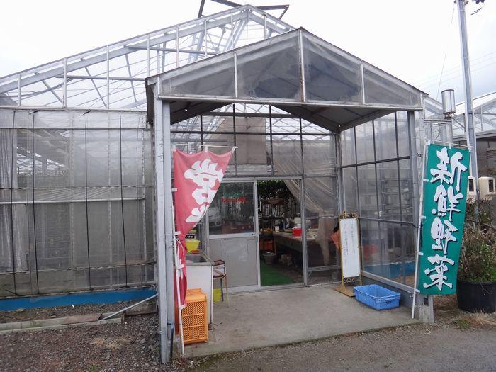 ももちゃん農園2
