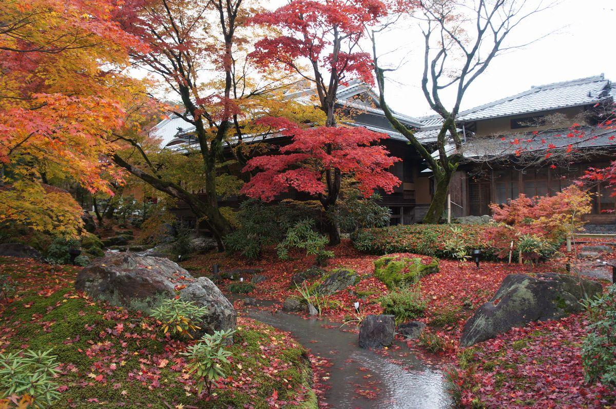 京都宝厳院5