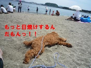 5月9日海の公園Dan君と3