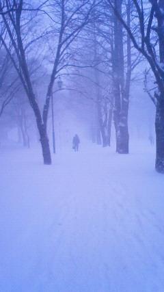 大雪2011