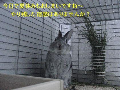CIMG417000.jpg
