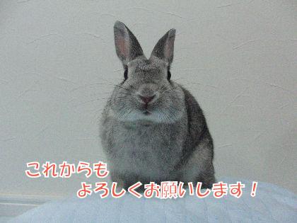 CIMG533100.jpg