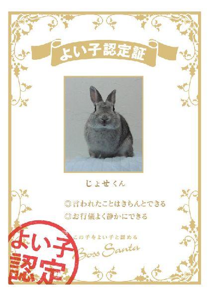 certification_ff4f171a11.jpg