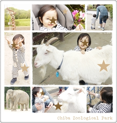 chiba Zoological Park 20120430