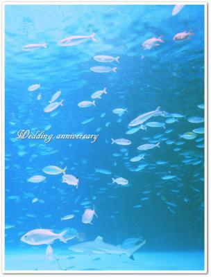結婚記念日①