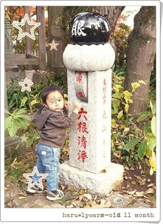 haru1歳11ヶ月