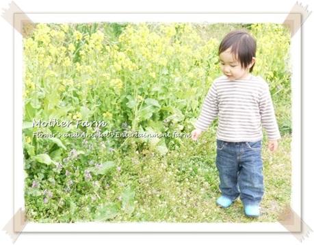 マザー牧場20130320①