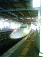 NEC_0293.jpg