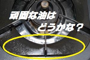DSC_0172101.jpg