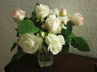 Blumen Umzug