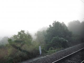 in Zuerich 2010 4