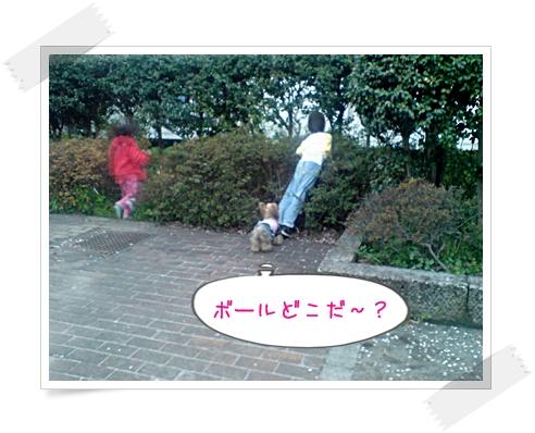 DSC00387p.jpg