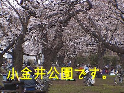 HPNX0116p.jpg