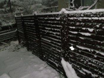 積雪(裏)