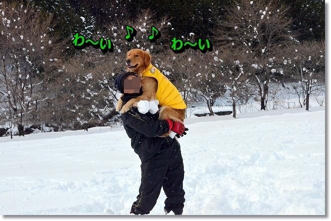 DSC_6540_2013123110243337e.jpg