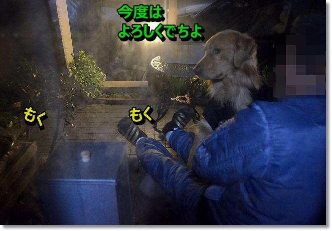 DSC_7310_20140113105050dd3.jpg