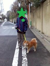 1月23日朝どんぐりちゃんお散歩 (3)-2