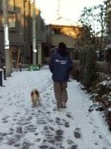 1月24日雪の散歩 (5)-2