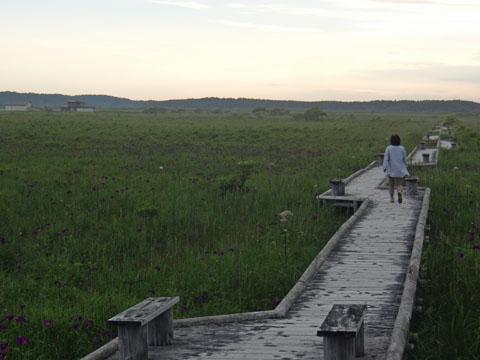 琵琶瀬湿原